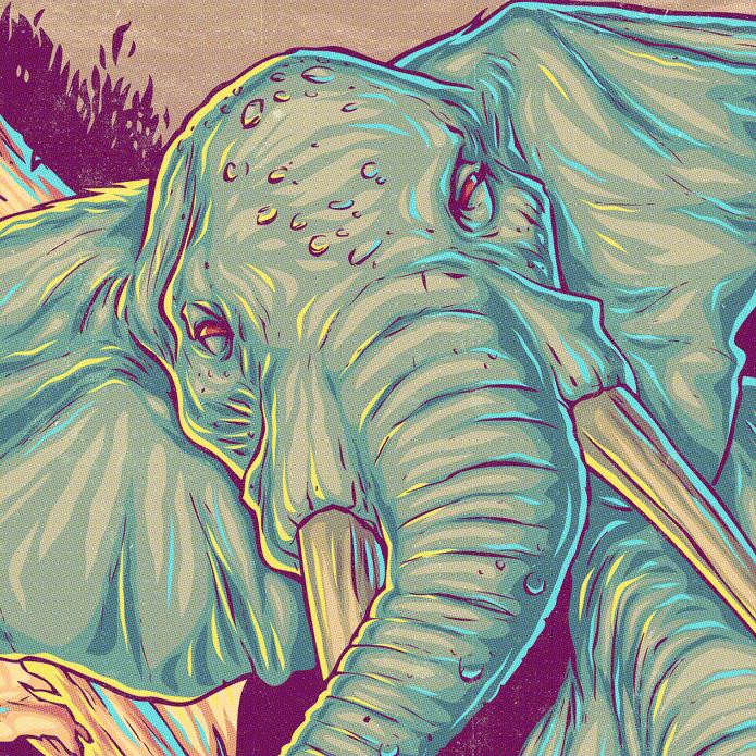 estampa_elefante_02